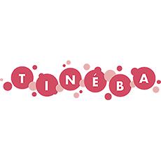 Tineba - Kinderladen Spatz, Straubing, Marken, Spielwaren